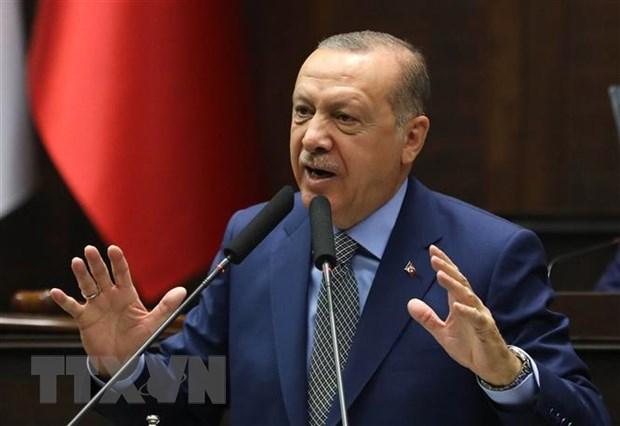 Tong thong Tho Nhi Ky Erdogan de xuat gap thu linh Taliban hinh anh 1