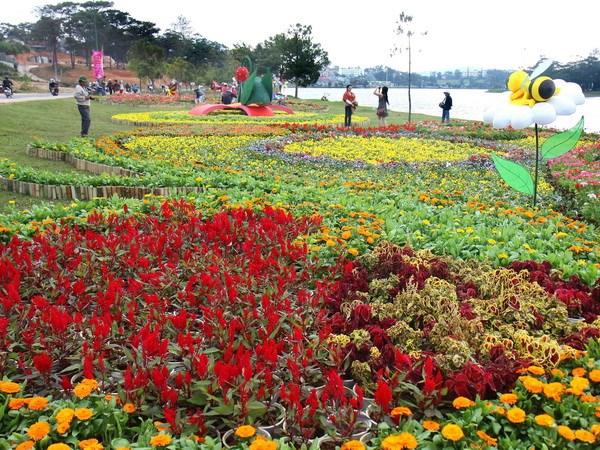 Pho hoa Da Lat, dai ngan Tay Nguyen vay goi khach gan xa hinh anh 1
