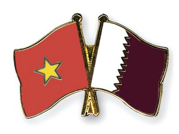 Tham van chinh tri thu nhat giua Bo Ngoai giao Viet Nam-Qatar hinh anh 1