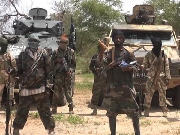 Boko Haram lan dau tien tan cong ben trong Cong hoa Chad hinh anh 1