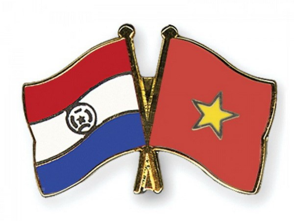 Hai Bo Ngoai giao Viet Nam va Paraguay tham khao chinh tri hinh anh 1