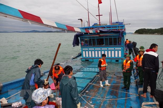 Thanh Hoa: Dua 5 ngu dan bi nan duoc cuu vao dat lien an toan hinh anh 1