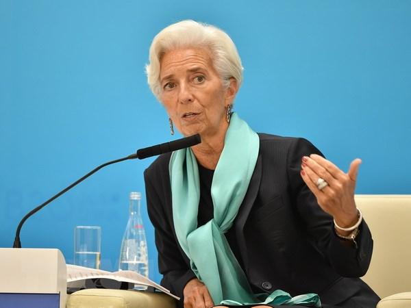 IMF: Xung dot xoa so thanh tuu phat trien mot the he o Trung Dong hinh anh 1