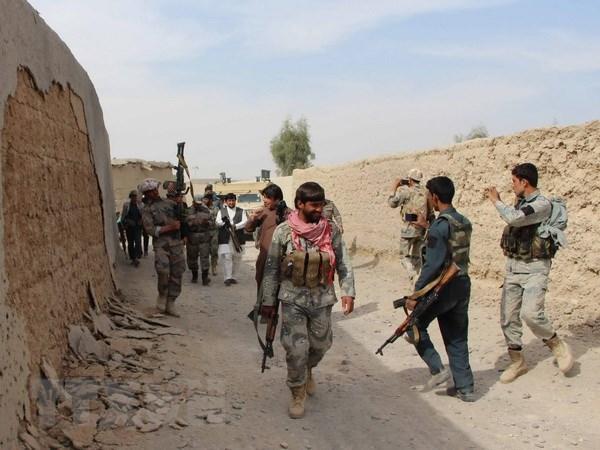 Taliban chua san sang dam phan hoa binh voi Chinh phu Afghanistan hinh anh 1