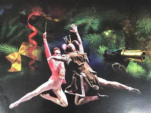 "Nghe sy Nga dien vo ballet kinh dien ""Kep hat de"" tai Ha Noi hinh anh 1"