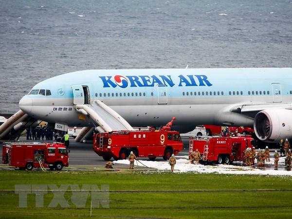 May bay hang hang khong Korean Air phai ha canh khan cap hinh anh 1