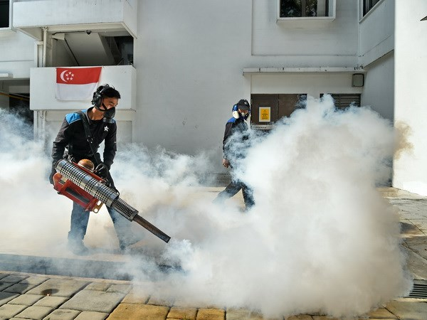 Singapore xac nhan them 2 truong hop nhiem virus Zika trong nuoc hinh anh 1