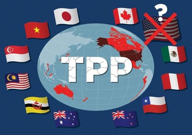 Cac truong doan dam phan TPP nhom hop tai thu do Tokyo hinh anh 1