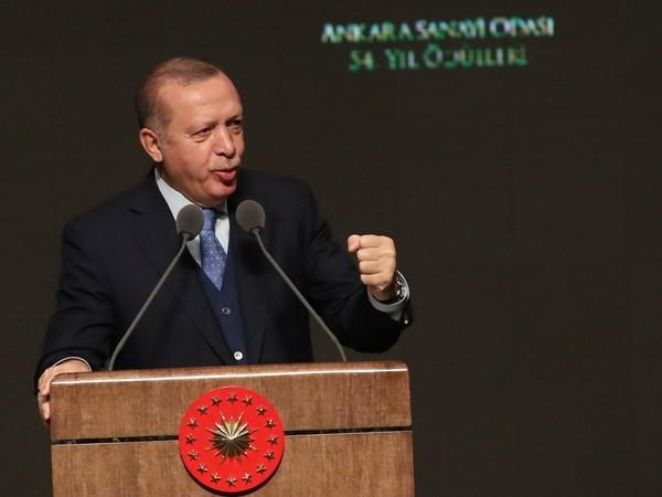 Tong thong Tho Nhi Ky Tayyip Erdogan tham Vatican va Italy hinh anh 1