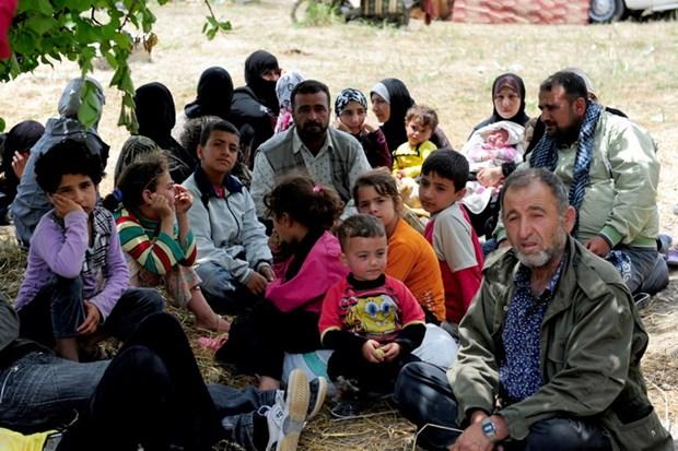 Tho Nhi Ky: Thanh pho Istanbul ngung tiep nhan nguoi ti nan Syria hinh anh 1