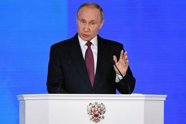 Tong thong Nga Putin khang dinh suc manh cua he thong vu khi hinh anh 1