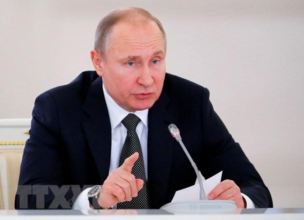 Tong thong Vladimir Putin voi trach nhiem nang ne trong nhiem ky moi hinh anh 1