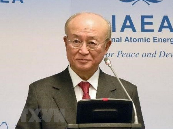 IAEA tuyen bo san sang thanh sat chuong trinh hat nhan cua Trieu Tien hinh anh 1