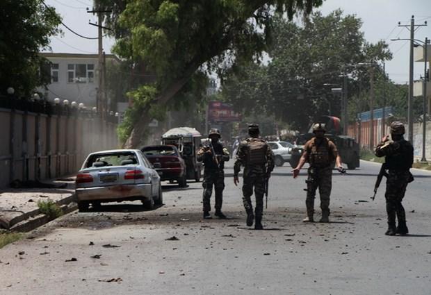 Taliban tien hanh nhieu vu tan cong trong ngay dau lenh ngung ban hinh anh 1