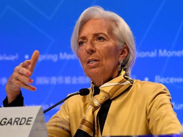 IMF: Cac chinh sach thuong mai cua ong Trump lam ton hai nen kinh te hinh anh 1