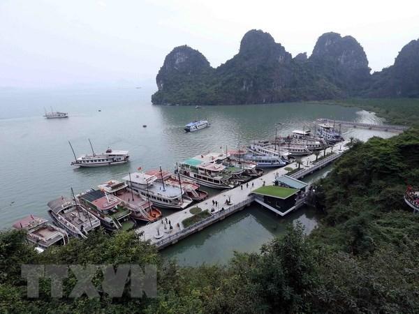 Quang Ninh dinh chi hoat dong 20 tau du lich tren Vinh Ha Long hinh anh 1