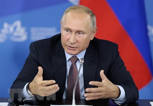 Tong thong Nga Putin dien dam voi nguoi dong cap Syria al-Assad hinh anh 1