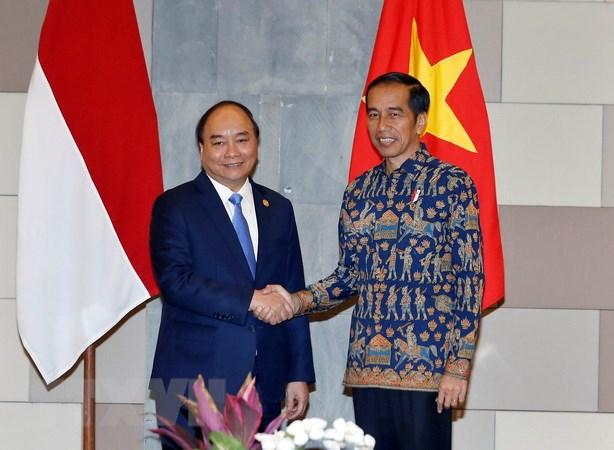 Viet Nam ho tro Indonesia 100.000 USD khac phuc hau qua song than hinh anh 2