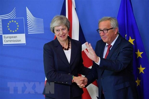 Thu tuong Anh no luc thuc day du luat thoa thuan Brexit voi EU hinh anh 1