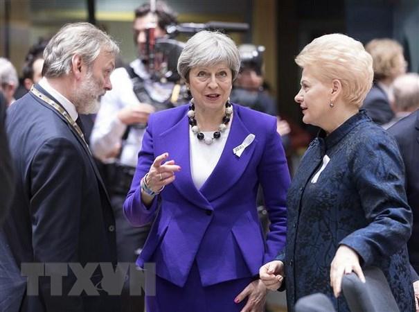Tong thong Litva khang dinh tien trinh Brexit van chua ket thuc hinh anh 1