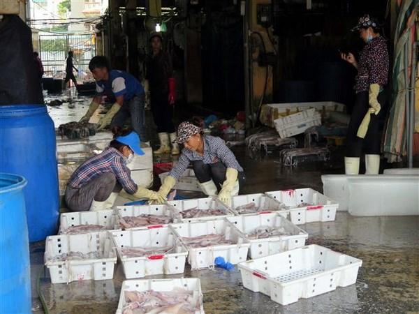 Thu tuong: Xu ly nghiem doi tuong vu hai nu phong vien dieu tra bi doa hinh anh 1