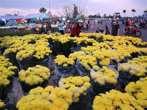 Da Lat co khoang 1.500 ha hoa phuc vu thi truong Tet Ky Hoi 2019 hinh anh 1