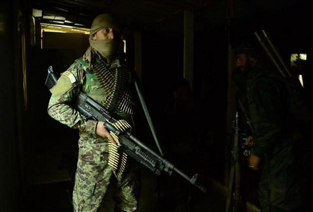 Cac tay sung Taliban kiem soat hon 30 lang tai mien Tay Afghanistan hinh anh 1