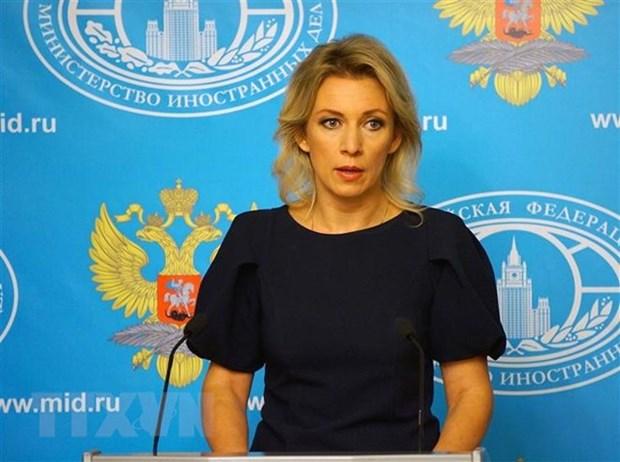 Ngoai truong Nga, Iran, Tho Nhi Ky se thao luan ve Syria o Sochi hinh anh 1