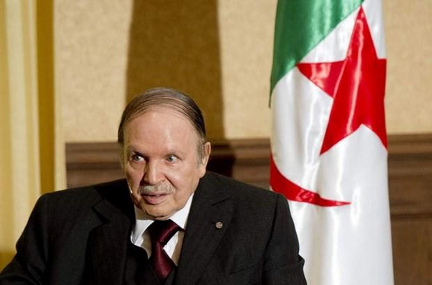 Algeria: Dang FLN chon Tong thong Bouteflika la ung cu vien cho bau cu hinh anh 1