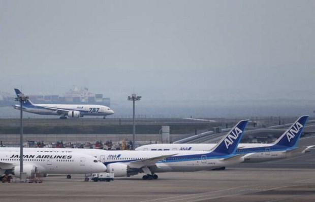 Hang All Nippon Airways hoan mot chuyen bay do phi cong uong ruou hinh anh 1
