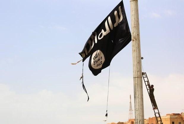 Syria: My 'tranh cong huong loi' tu thanh tich chong khung bo cua Nga hinh anh 1