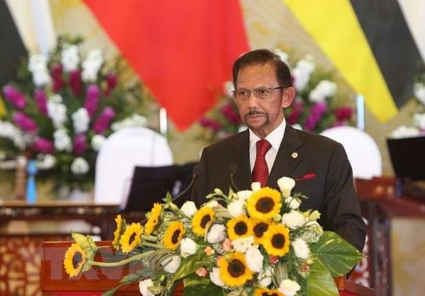 Buoc tien quan trong ca ve luong va chat trong quan he Viet Nam-Brunei hinh anh 1