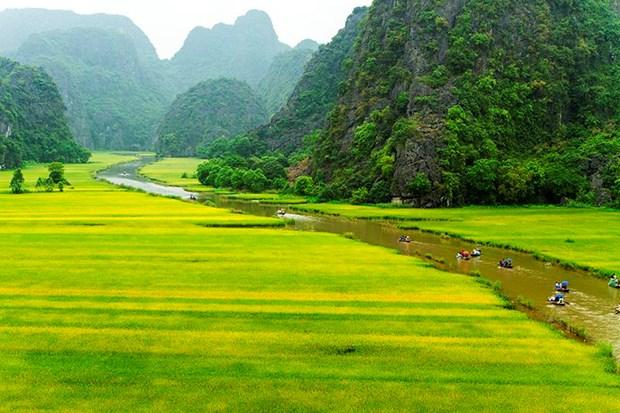 "Bi kip di du lich o Ninh Binh giua ""mua vang"" Tam Coc hinh anh 1"