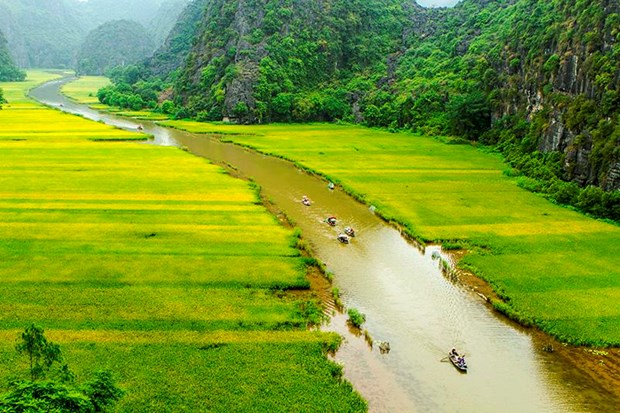 "Bi kip di du lich o Ninh Binh giua ""mua vang"" Tam Coc hinh anh 11"