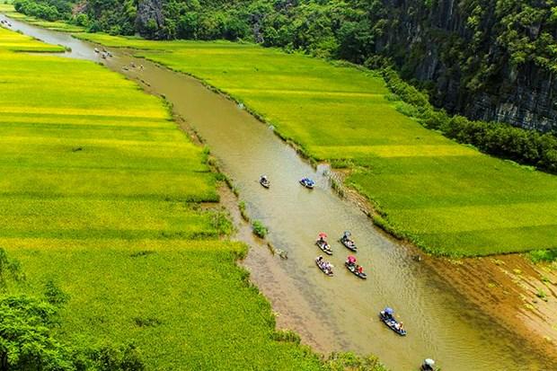 "Bi kip di du lich o Ninh Binh giua ""mua vang"" Tam Coc hinh anh 13"