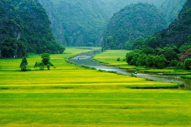 "Bi kip di du lich o Ninh Binh giua ""mua vang"" Tam Coc hinh anh 2"