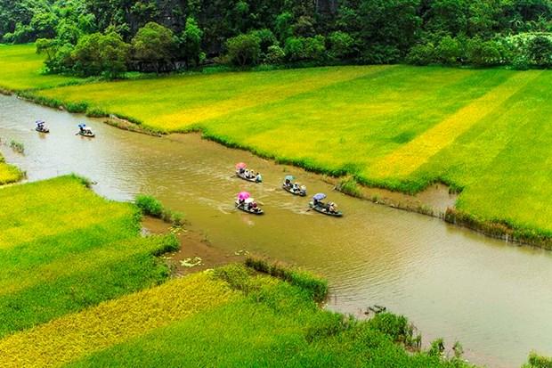"Bi kip di du lich o Ninh Binh giua ""mua vang"" Tam Coc hinh anh 3"