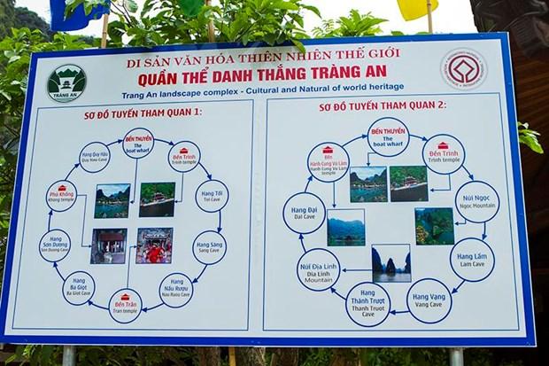 "Bi kip di du lich o Ninh Binh giua ""mua vang"" Tam Coc hinh anh 4"