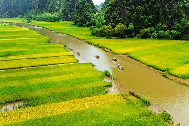 "Bi kip di du lich o Ninh Binh giua ""mua vang"" Tam Coc hinh anh 6"