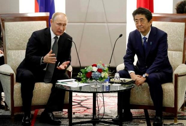 Hoi nghi G20: Xu the tich cuc trong quan he Nga-Nhat Ban hinh anh 1