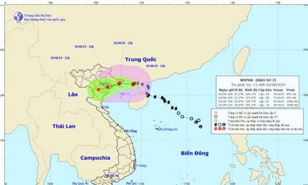 Thu truong Bo Nong nghiep: Khong duoc chu quan trong ung pho bao so 3 hinh anh 1