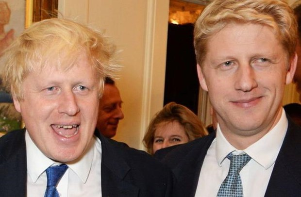 Em trai Thu tuong Anh Boris Johnson roi khoi vi tri trong chinh quyen hinh anh 1