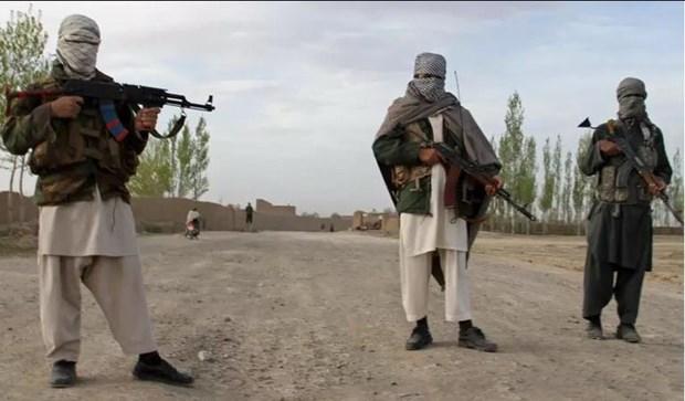 Afghanistan: Luc luong phien quan Taliban bat coc nhieu nha bao hinh anh 1