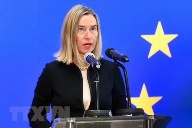 EU canh bao su bat on sau vu tan cong nha may loc dau Saudi Arabia hinh anh 1