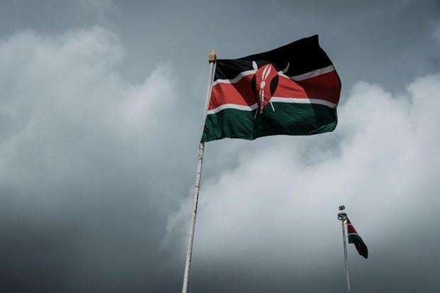Somalia trieu Dai su Kenya sau vu may bay vi pham khong phan hinh anh 1