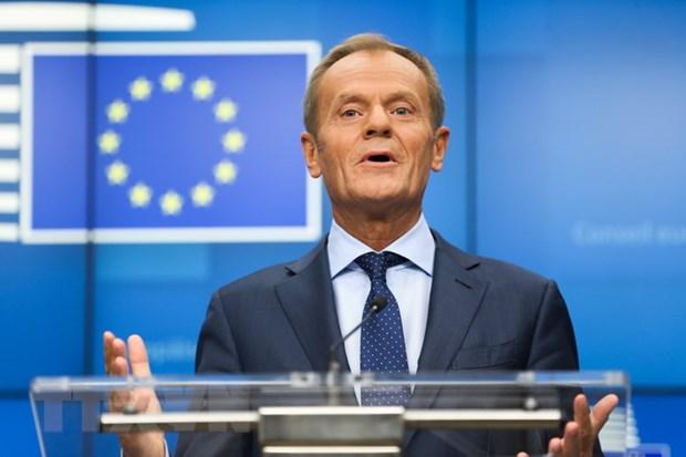 Chu tich EC Donald Tusk hoi thuc Tho Nhi Ky rut quan khoi Syria hinh anh 1