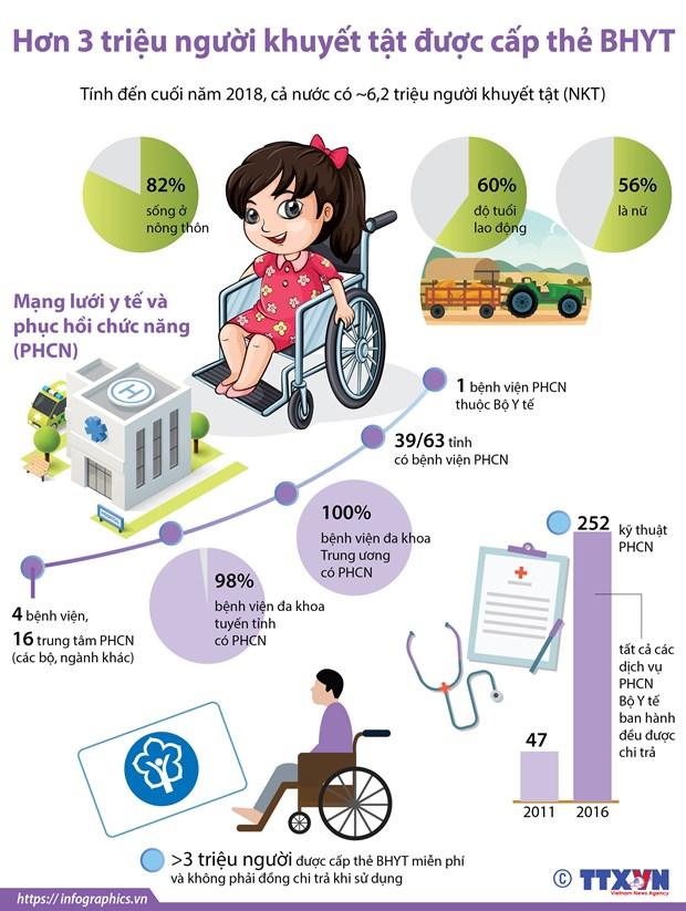 [Infographics] Hon 3 trieu nguoi khuyet tat duoc cap the BHYT hinh anh 1