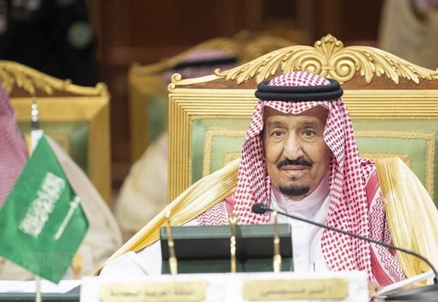 Quoc vuong Saudi Arabia keu goi cac nuoc vung Vinh doan ket chong Iran hinh anh 1