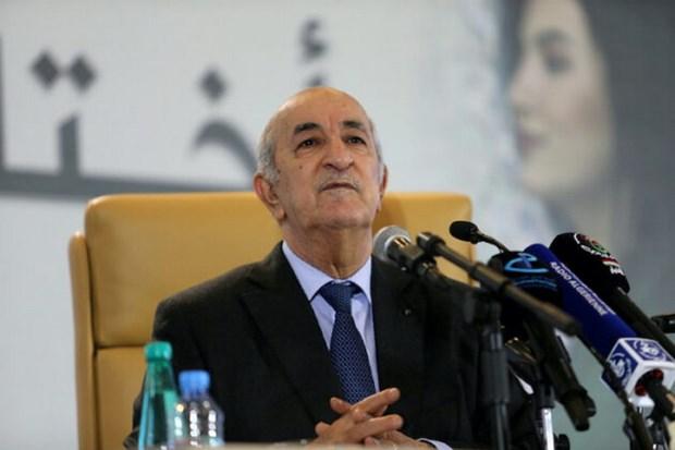 Libya: Algeria san sang to chuc doi thoai giua cac ben xung dot hinh anh 1