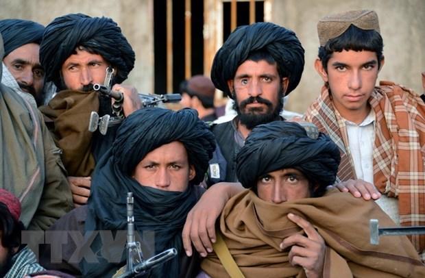 Afghanistan: Gan 60 phien quan Taliban o 3 tinh ra dau hang hinh anh 1